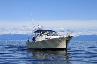 Haida Gold Ocean Adventures